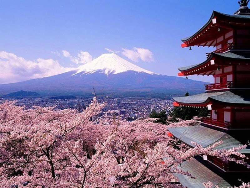 همه چیز درباره ژاپن کشور زیبایی های افسانه ای